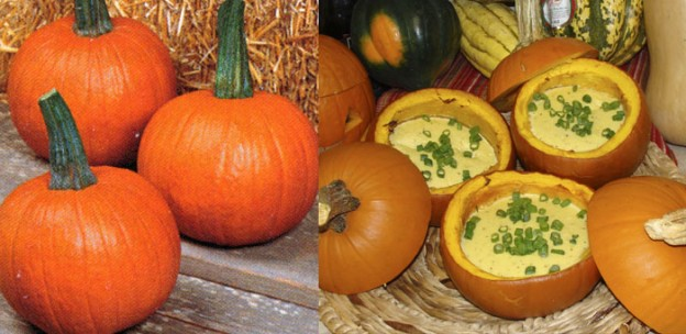 pumpkin-nutrition