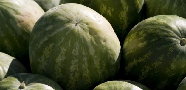 seedless-watermelon2